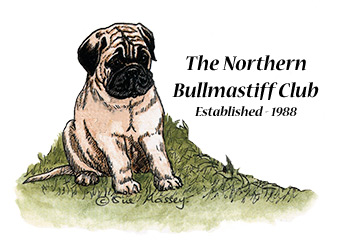 The first Northern Bullmastiff Club Committee